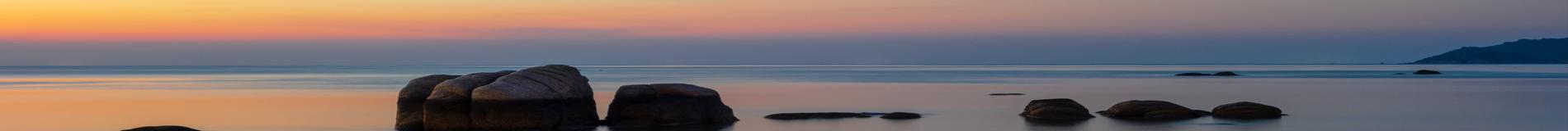 Mindfulness Meditation for TC Wellness