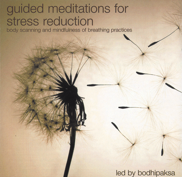 Guided Meditations for Stress Reduction