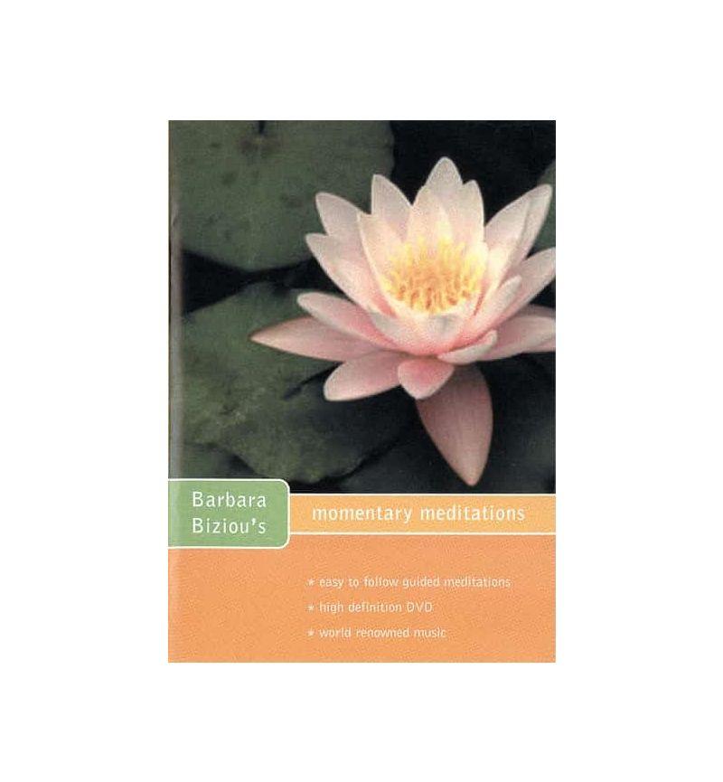 Momentary Meditations DVD