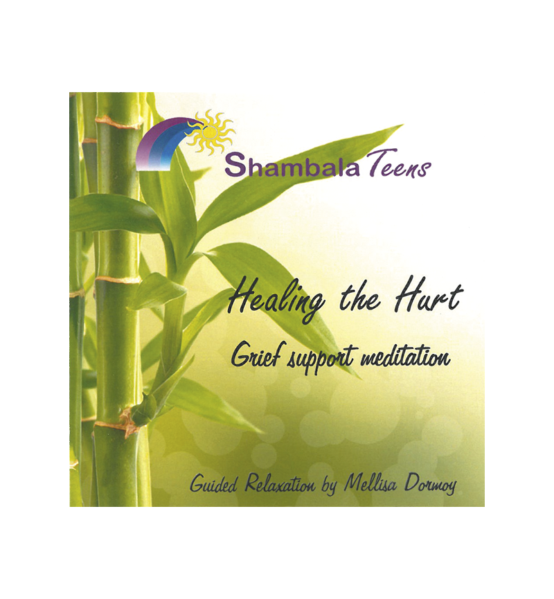 Healing the Hurt: Grief Support Meditation CD